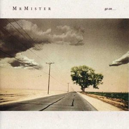 Mr Mister<br>Go On<br>LP