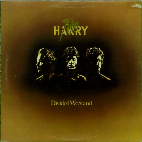King Harry<br>Divided We Stand<br>LP