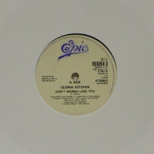 "Gloria Estefan<br>Don'T Wanna Lose You<br>7"" single"