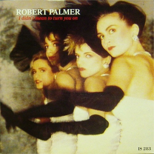 "Robert Palmer<br>I Didn't Mean To Turn You On<br>7"" single"
