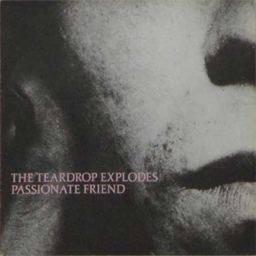 "The Teardrop Explodes<br>Passionate Friend<br>7"" single"