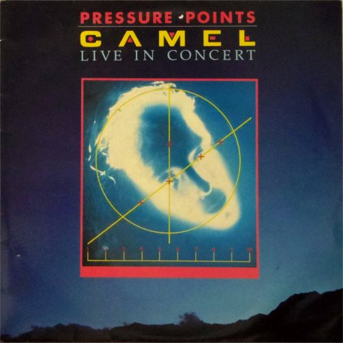 Camel<br>Pressure Points<br>LP