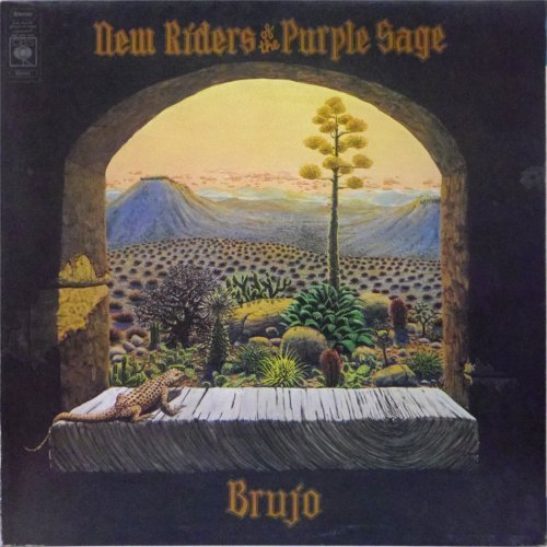 New Riders of The Purple Sage<br>Brujo<br>LP (UK pressing)