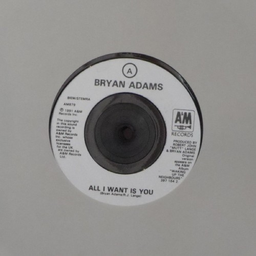 "Bryan Adams<br>All I Want Is You<br>7"" single"