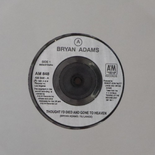 "Bryan Adams<br>Thought I'd Died And Gone To Heaven<br>7"" single"