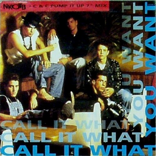"New Kids On The Block<br>Call It What You Want<br>7"" single"