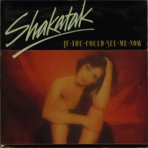 "Shakatak<br>If You Could See Me Now<br>7"" single"